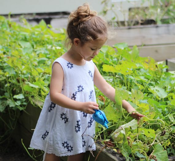 7 Great Garden Activities For Kids